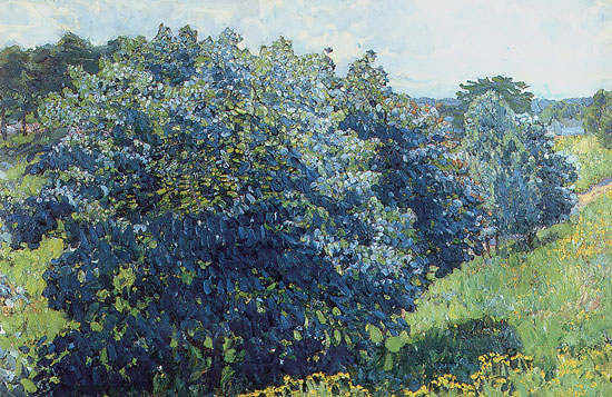 Konstantin youn blue bush for Blue flowering bush